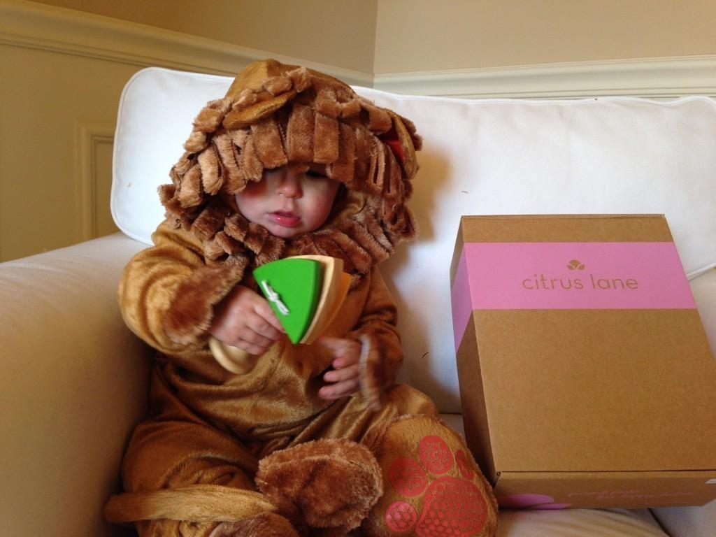 WB the Lion!