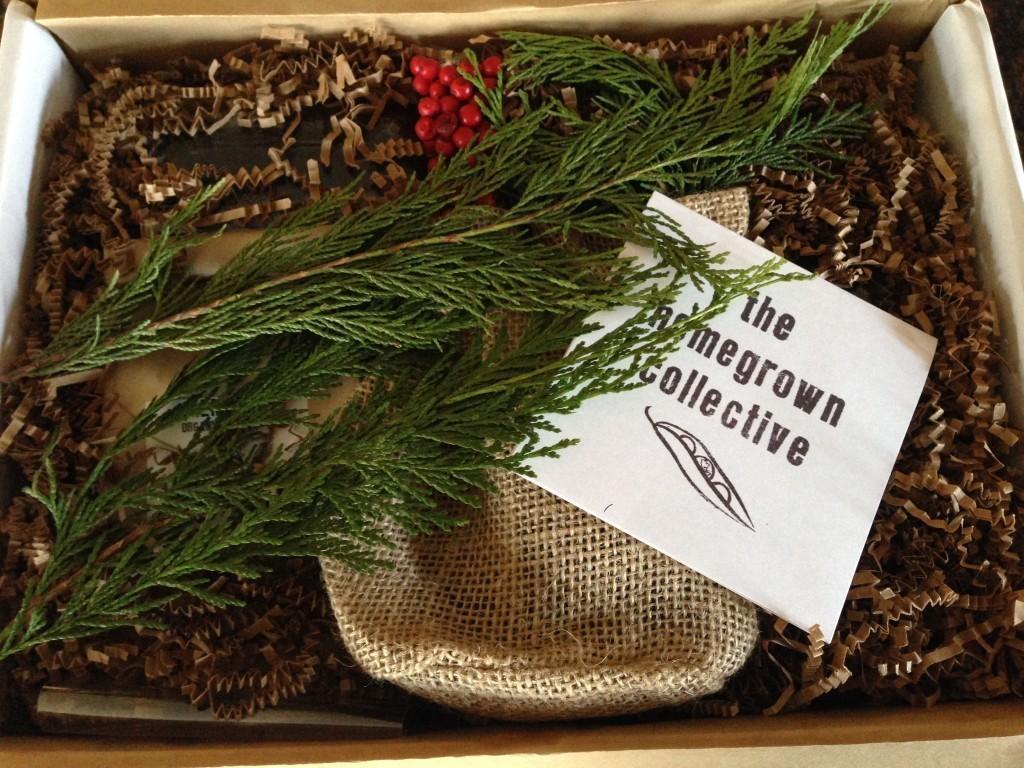 November The Homegrown Collective