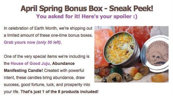 Yogi Surprise Bonus Box Spoiler