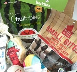 """BarkBox August 2015 Subscription Box Review - """"Summer Block Party"""" + Coupon Code"""