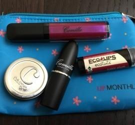 Lip Monthly January 2016 Subscription Box Review + Coupon Code