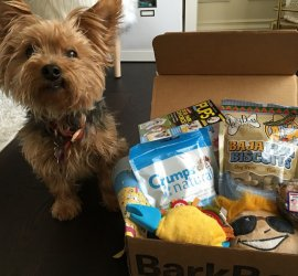 BarkBox August 2016 Subscription Box Review + Coupon Code