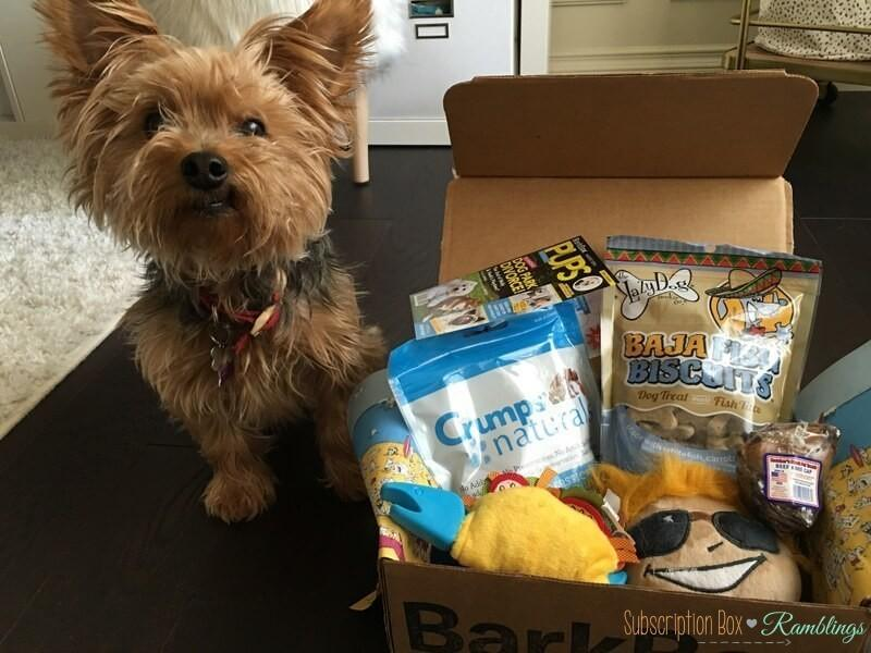 Barkbox First Month Free Subscription Box Ramblings