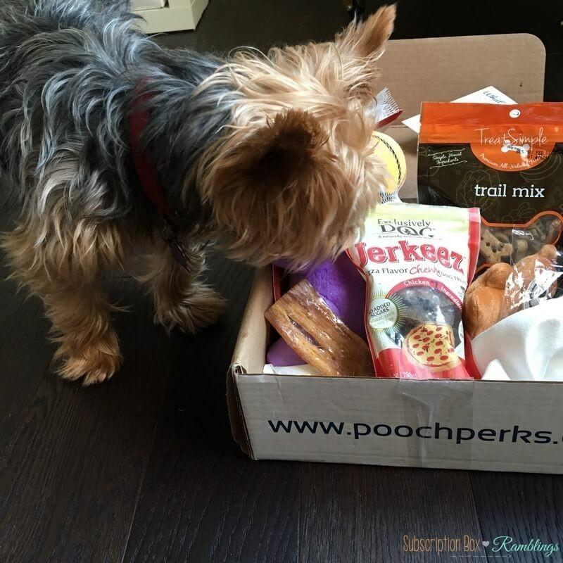 Pooch Perks September 2016 Subscription Box Review + Coupon Code