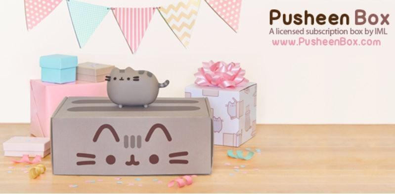 Pusheen Fall 2016 Box Spoiler!