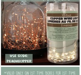 Peaches and Petals - Free Copper Wire Lights with New Subscriptions!