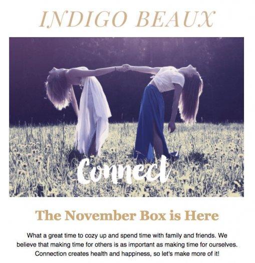 Indigo Beaux November 2016 Subscription Box Spoiler #2