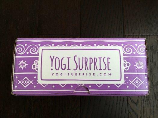 Yogi Surprise November 2016 Review + Coupon Code