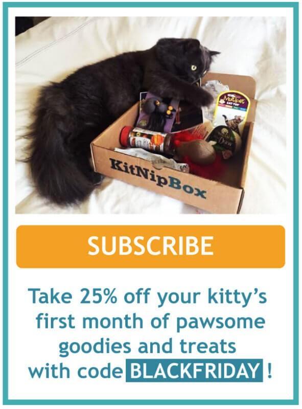 KitNipBox 25% Off Black Friday Coupon Code!