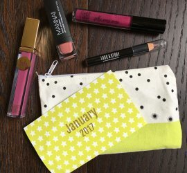 Lip Monthly Subscription Box Review January 2017