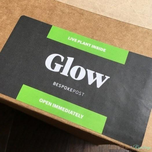 "Bespoke Post Review - January 2017 ""Glow"""
