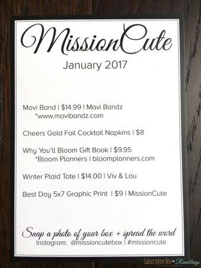 MissionCute Review - January 2017