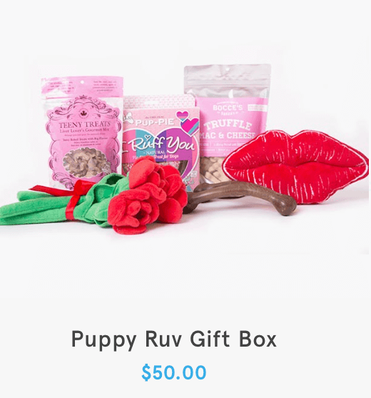 BarkBox Valentine's Day Gift Boxes – Now Available!