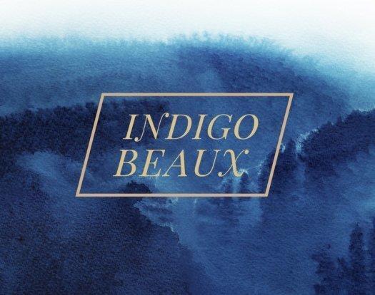 Indigo Beaux February 2017 Spoiler #2