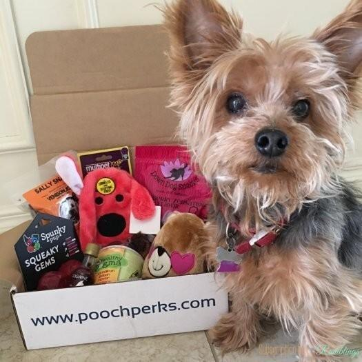 Pooch Perks Review + Coupon Code - February 2017