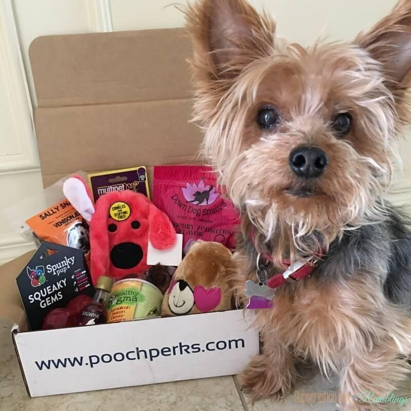 Pooch Perks Review + Coupon Code – February 2017