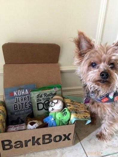 BarkBox Coupon Code – First Month for $5 on 6 or 12-month Plans!