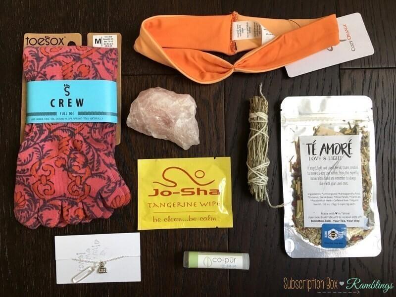 BuddhiBox Review – February 2017