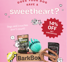 BarkBox Coupon Code - 14% Off Gift Subscriptions
