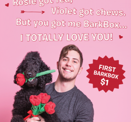 BarkBox Coupon Code - First Month for $1 on 6 or 12-month Plans!