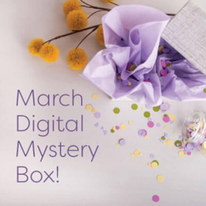 Cricut March 2017 Mystery Box – On Sale Now + Coupon Code