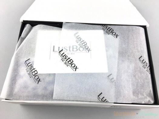 LustBox Review - March 2017