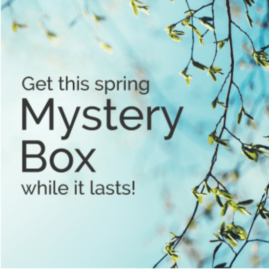 Cricut April 2017 Mystery Box – On Sale Now + Coupon Code