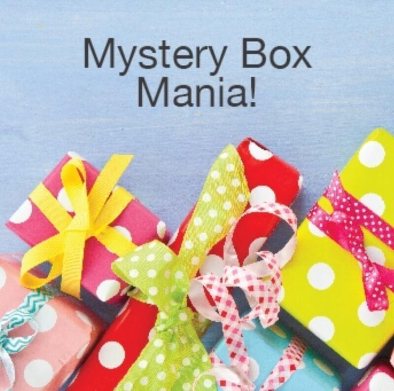 Cricut June 2017 Mystery Box – On Sale Now + Coupon Code