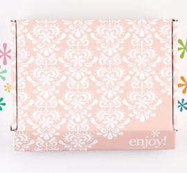 Erin Condren Summer 2017 Seasonal Surprise Box Sneak Peek!