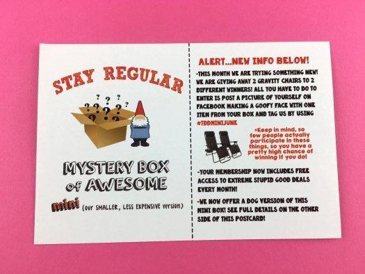 Mini Monthly Mystery Box of Awesome Review - June 2017