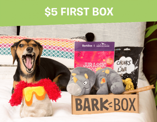 BarkBox Coupon Code – $5 First Box on 6 or 12-month Plans!