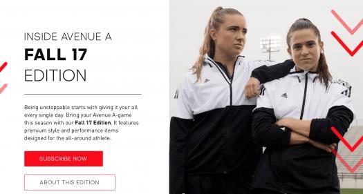 adidas Avenue A Fall 2017 Curator Reveal + Spoiler #1