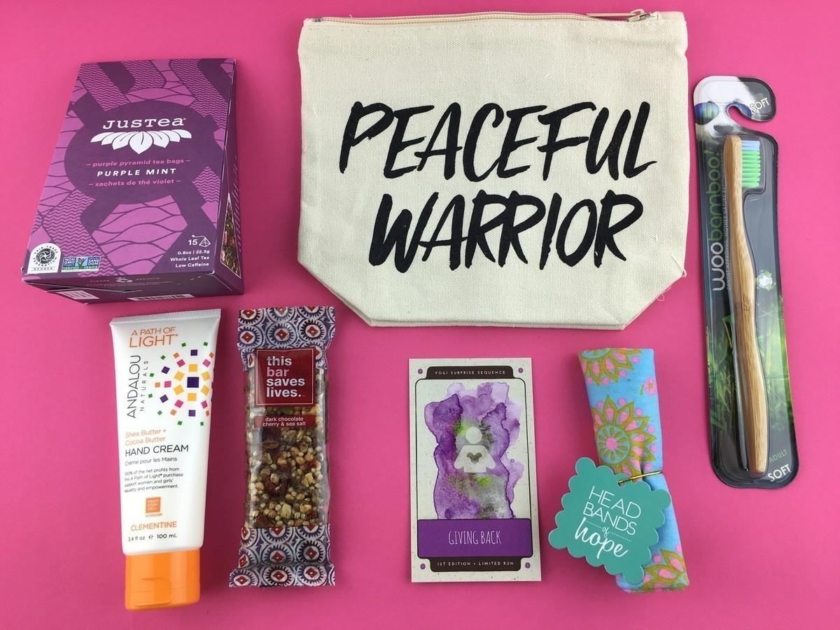 Yogi Surprise Review + Coupon Code – August 2017