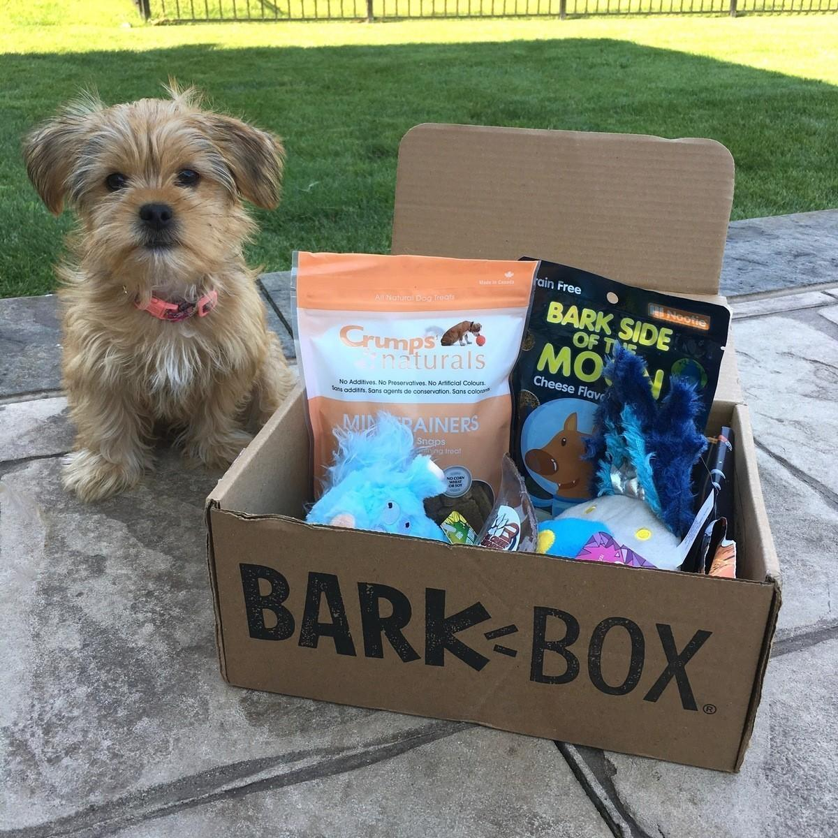 BarkBox Subscription Review + Coupon Code – August 2017