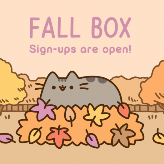 Pusheen Fall 2017 Box - On Sale Now
