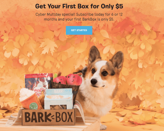 LAST DAY! BarkBox $5 First Box on 6 or 12-month Plans!