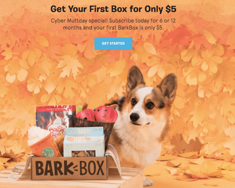 BarkBox Black Friday Coupon Code – $5 First Box on 6 or 12-month Plans!