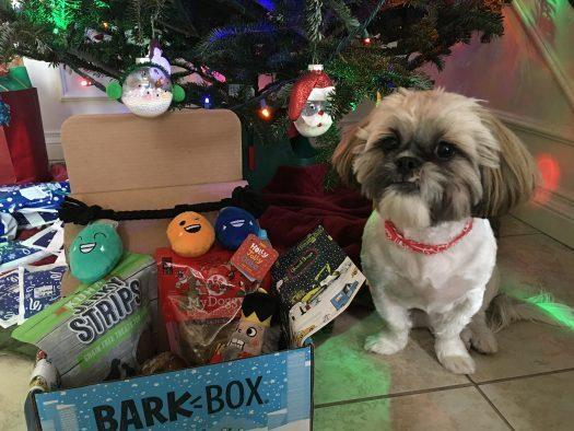BarkBox Coupon Code – $5 First Box on 6 or 12-month Plans + Holiday Delivery!