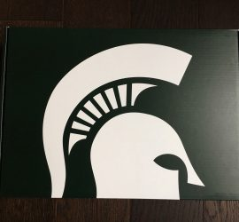 Spartan Box Michigan State Subscription Box Review - January 2018
