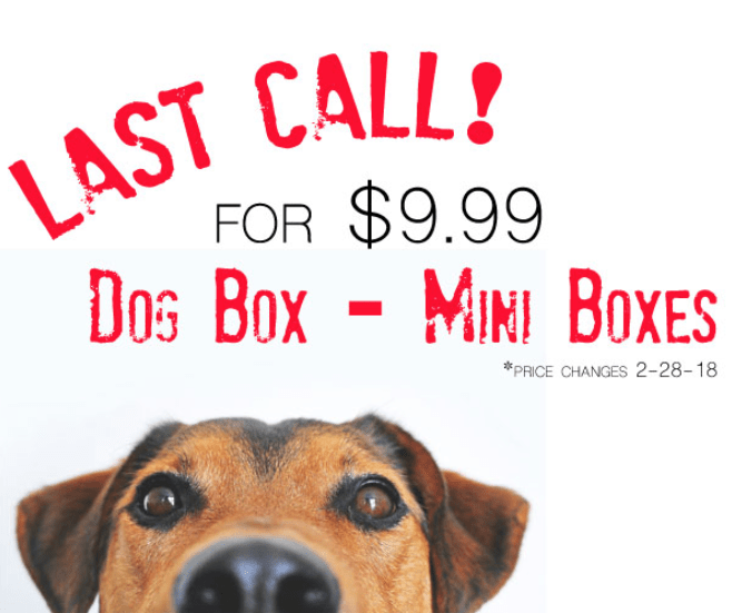 Mini Monthly Mystery Box For Dogs – Price Increase Coming 2.28.18!