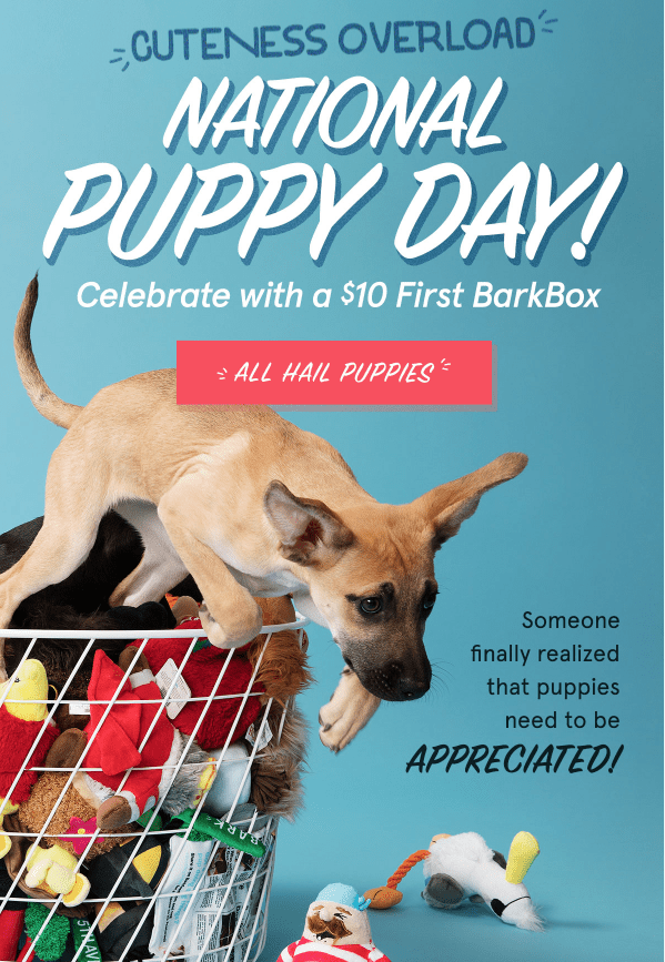 BarkBox Coupon Code – $10 First Box on 6 or 12-month Plans!