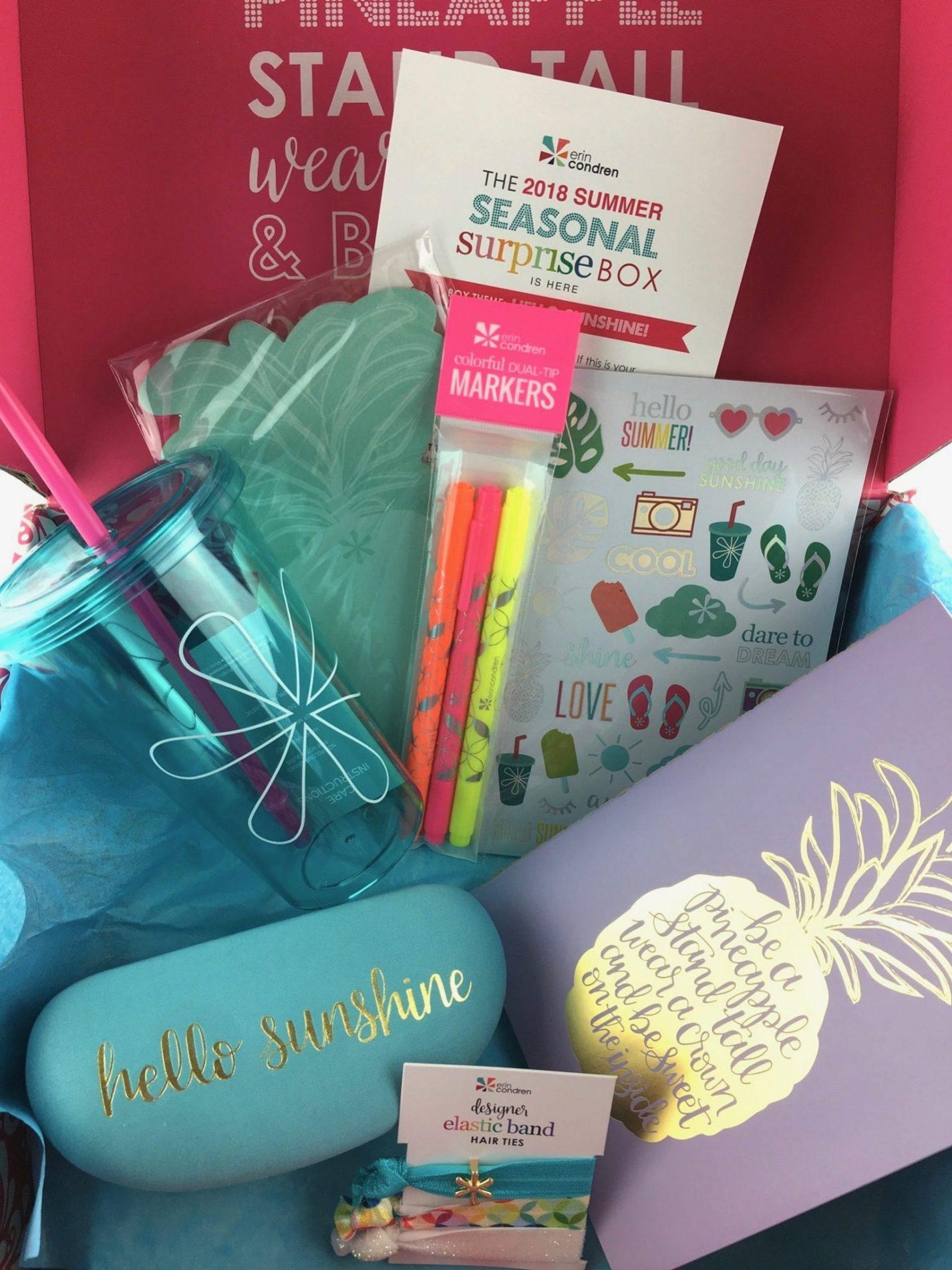 Erin Condren Seasonal Surprise Box Review Summer 2018
