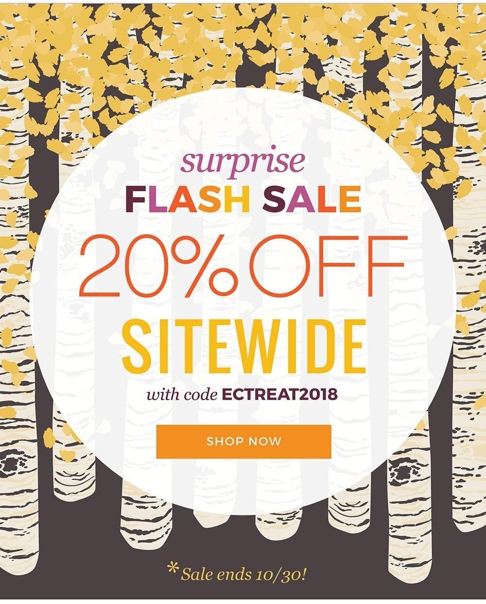 LAST DAY: Erin Condren Flash Sale – Save 20%!