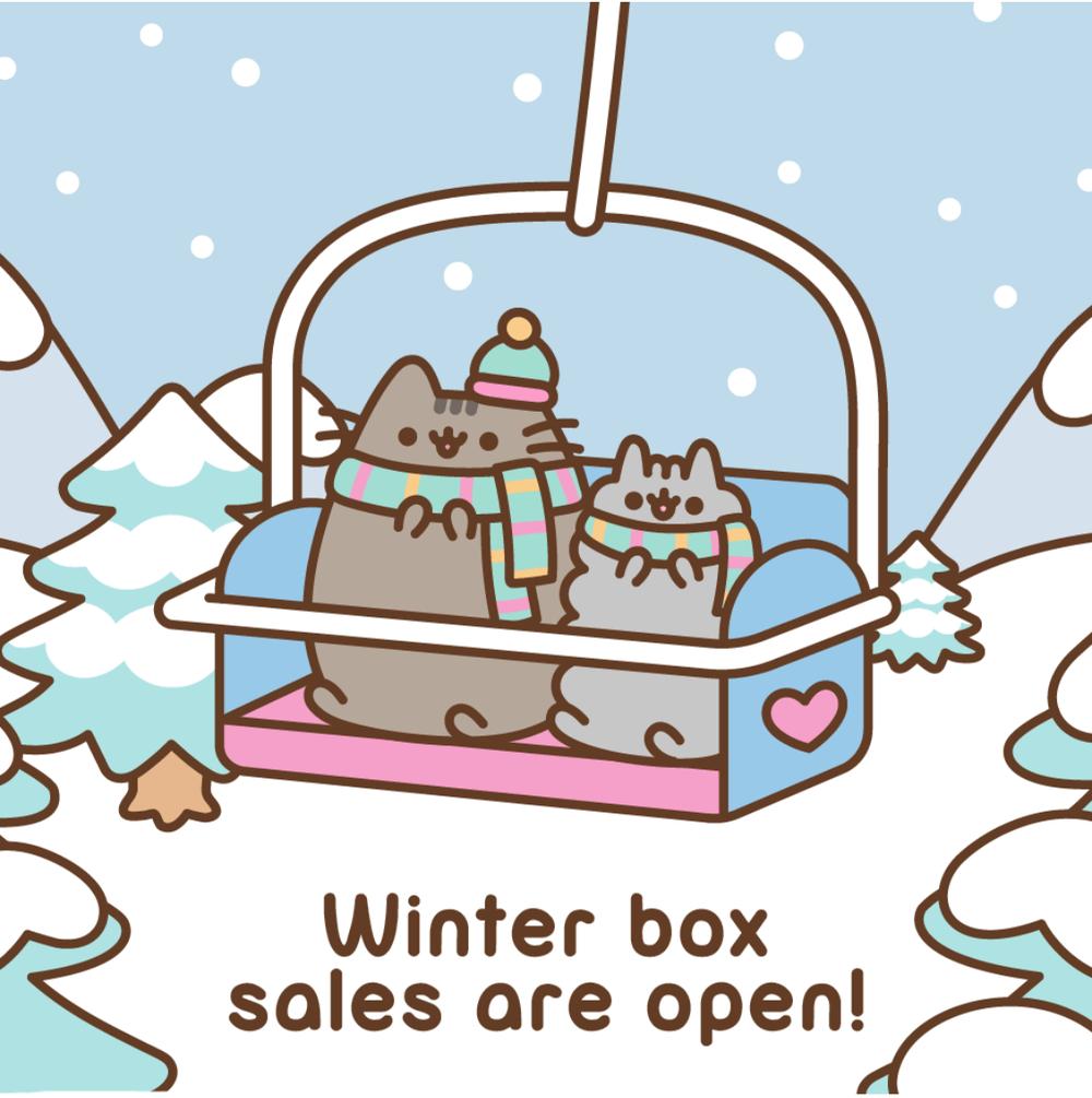 Pusheen Winter 2018 Box Spoiler #1