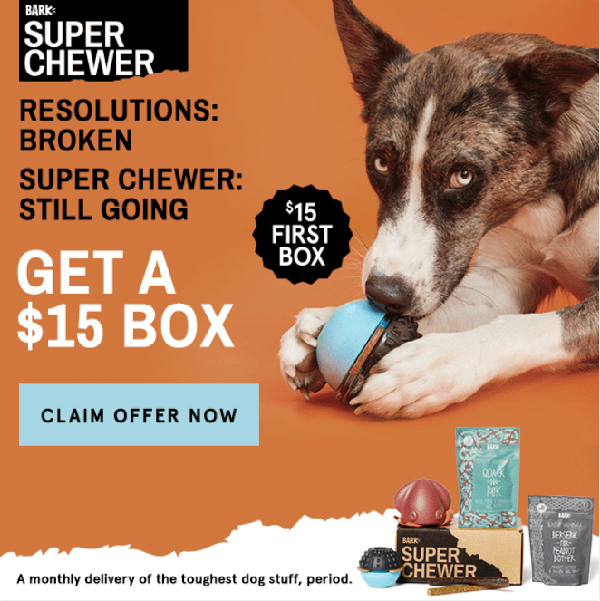 Barkbox super chewer coupon