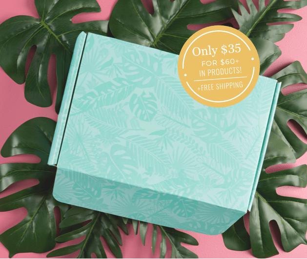 LAST CALL! Erin Condren Summer 2019 Seasonal Surprise Box + Sneak Peek!