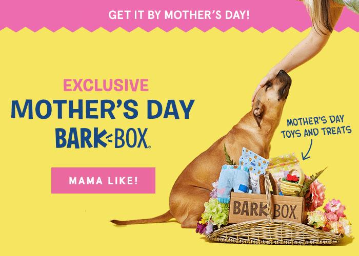 BarkBox Special Edition Mother's Day Box + Free Bonus Box!