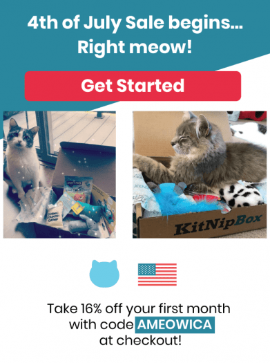 KitNipBox 4th of July Sale – 16% Off First Month!
