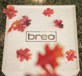 Breo Box Fall 2019 Spoiler #1