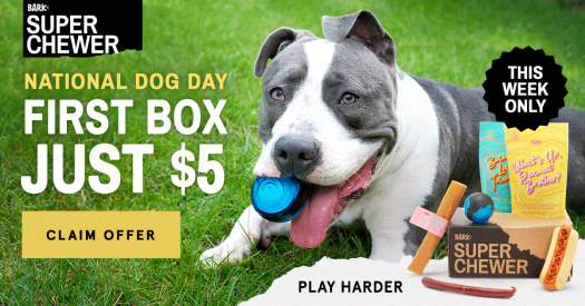BarkBox Super Chewer Coupon Code – First Box for $5